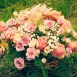roses-630970_640