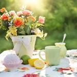summer-still-life-783347_640