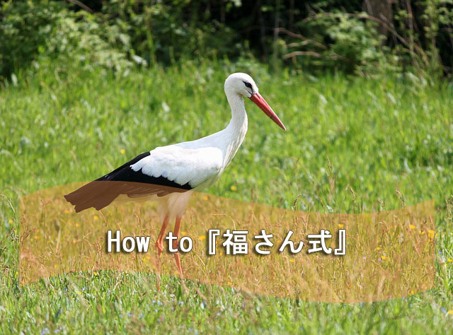 how-to-fuku-stork