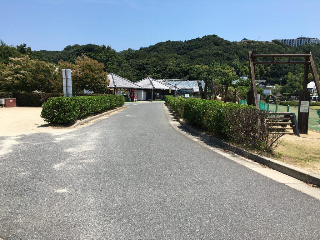 awajicampIMG_1187