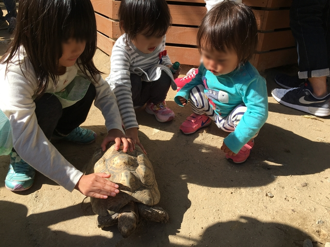 shirotori-zoo_2561