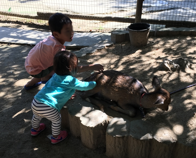 shirotori-zoo2568