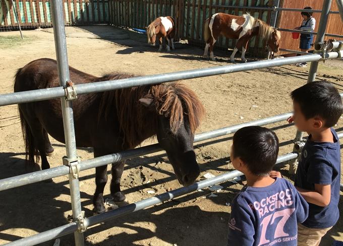 shirotori-zoo_2577