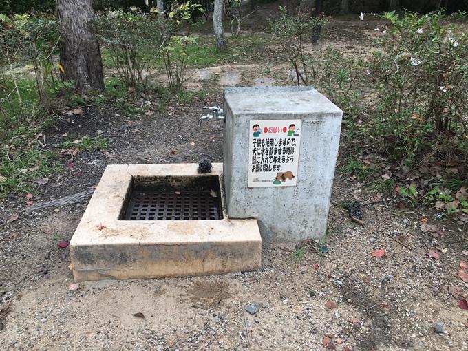 okusuma-park2752