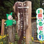 【新田ふるさと村】川遊び&芝滑りできるキャンプ場!サイト紹介と周辺情報