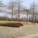 赤穂海浜公園オートキャンプ場☆初心者におススメの理由と周辺案内