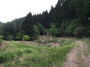 yunohara-IMG_0318