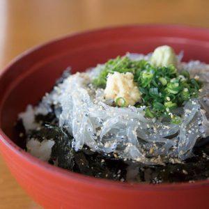 hamachidori-namashirasu