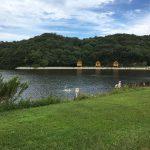 東かがわ市の大池オートキャンプ場~サイト案内と周辺情報
